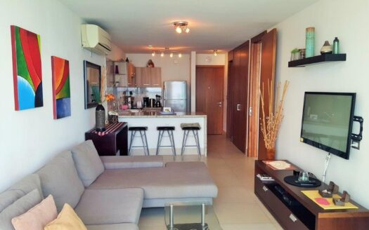 Gorgona beach front condo Bahia tower 1